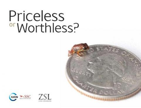 Priceless or worthless